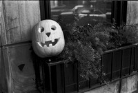 RUSH ST. ST. JAMES, MICHIGAN AVE. MANNEQUINS, HALLOWEEN, SELFIES 1975_10